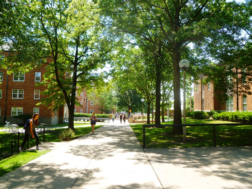 Tree-lined sidewalks by Residence Halls and Violette Hall